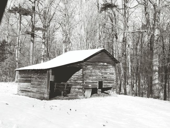 Old tobacco barn near where I live. In this rural farming community there are several of these. They remind me of my childhood when my dad raised tobacco. Snow Built Structure Tree Winter Architecture No People Building Exterior Nature Cold Temperature Day Outdoors Beauty In Nature Architecture Landscape