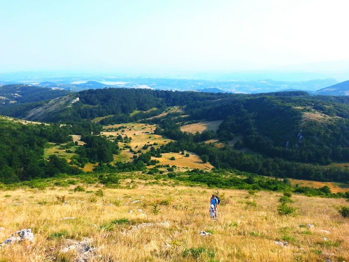 Borski Stol Hiking Summertime Mountain View