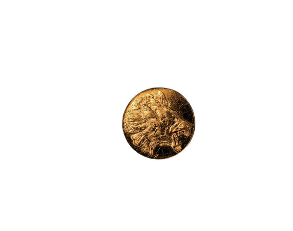 little gold medal Close-up Coin Coins Gold Colored Heraldic Lion Me Objektifimden Power Shiny White Background