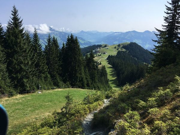 Mountain Hike in Tyrol Austria Mountain Growth Tree Nature Beauty In Nature No People Sky Outdoors Day Landscape Nature Holiday