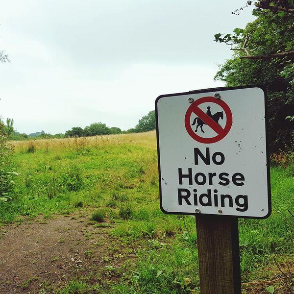 No Horses Sign Field Nature Notice