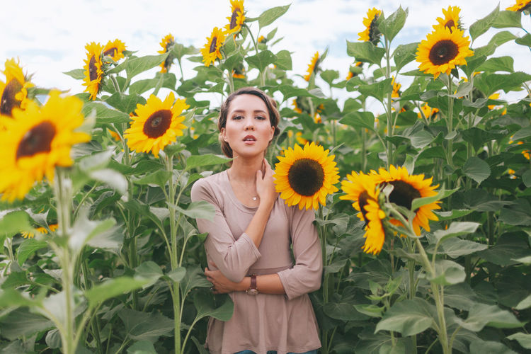 A beautiful woman in a sunflower field. Portrait Of A Woman Beautiful Woman Flower Flowering Plant Freshness Front View Growth Hairstyle Leisure Activity Looking At Camera Nature One Person Outdoors Plant Portrait Real People Standing Sunflower Vulnerability  Yellow Young Adult Young Women