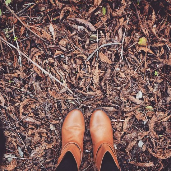No contrast, just walking on dead, dried, brown floor with my chestnut color boots. Boots Happy Feet From Above  Looking Down Brown Shoes Brown Boots Textures And Surfaces Leafs Leafs On The Ground Winter Paris In Winter Leafs On Winter Floor Brown Leafs Textures Color Palette A Bird's Eye View