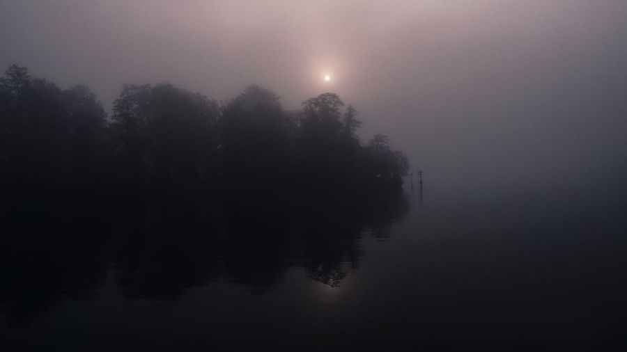 | Foggy Moods Hazey Misty Beauty In Nature Fog Hazy  Lake Mist Nature Reflection Tranquil Scene Tranquility Tree Water