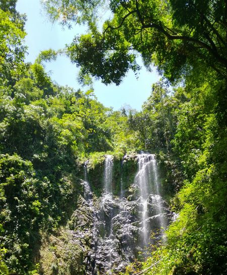 Charco Prieto Bayamon Puerto Rico Enjoying Nature Living The Moment Thanx Sofia Cascade Beauty In Nature