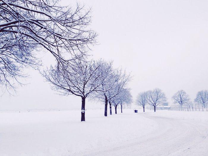 Winter Snowday Tempelhofer Feld