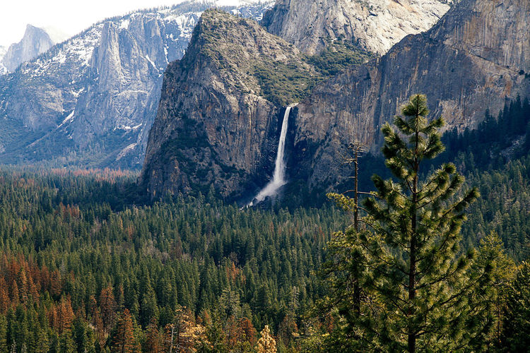 #color #yosemite #yosemitenational Beauty In Nature Day Mountain Mountain Range Nature No People Outdoors Scenics