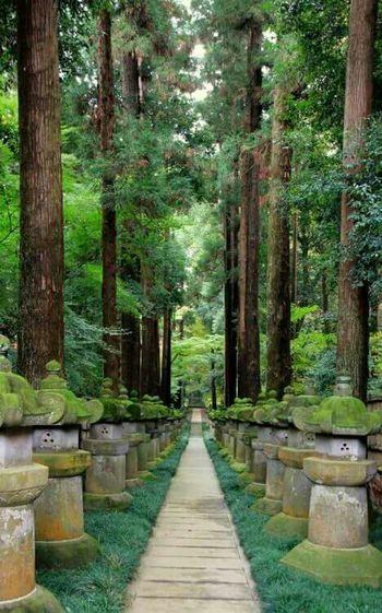 Amazing_captures Awesome_shots Awsomenature Beautiful Nature Best View EyeEm Best Shots Eyem Best Shot