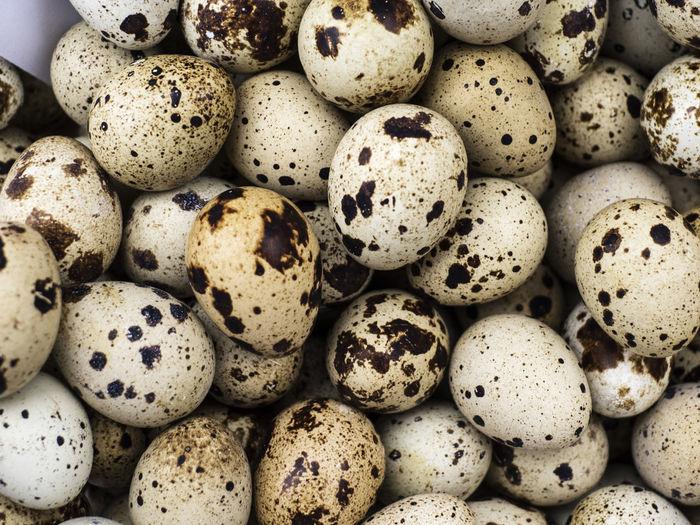 Full frame shot of quail eggs for sale