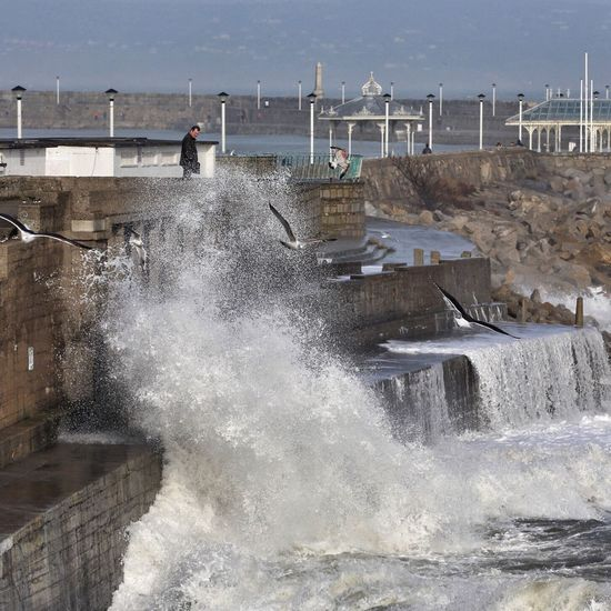 A big splash Splashing Sea Power In Nature Beauty In Nature Wave Dun Laoghaire Nature On Your Doorstep Ireland Birds Seagull Pier