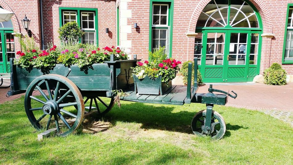 Flowers ,carriage , Flowers Hello World Holiday