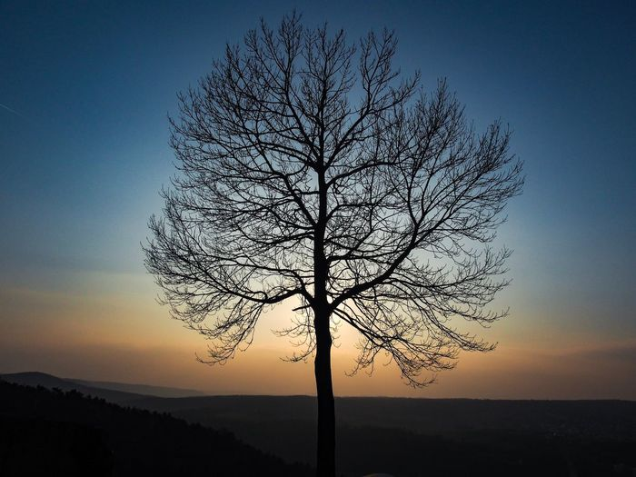 Abendstimmung Eyem Best Shots Nature_collection Eyem Nature Lovers  Sky Beauty In Nature Tree Tranquil Scene Sunset Scenics - Nature Tranquility Silhouette Nature Idyllic