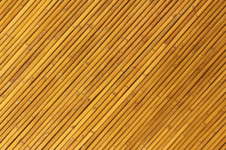 Architecture Backgrounds Bamboo Ceiling Close-up Day Full Frame Hardwood Nature No People Outdoors Pattern Roof Striped Textured  Wood - Material Yellow Yellow Bamboo