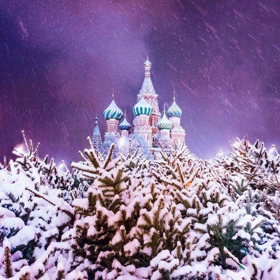 Москва Россия Кремль