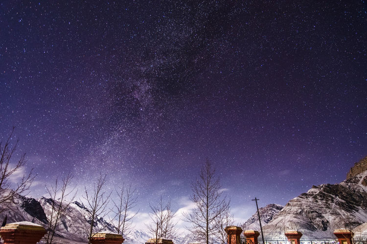 Low angle view of trees and mountain against starry sky at night