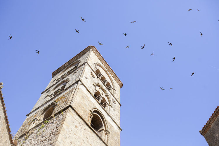 Low angle view of birds flying in building