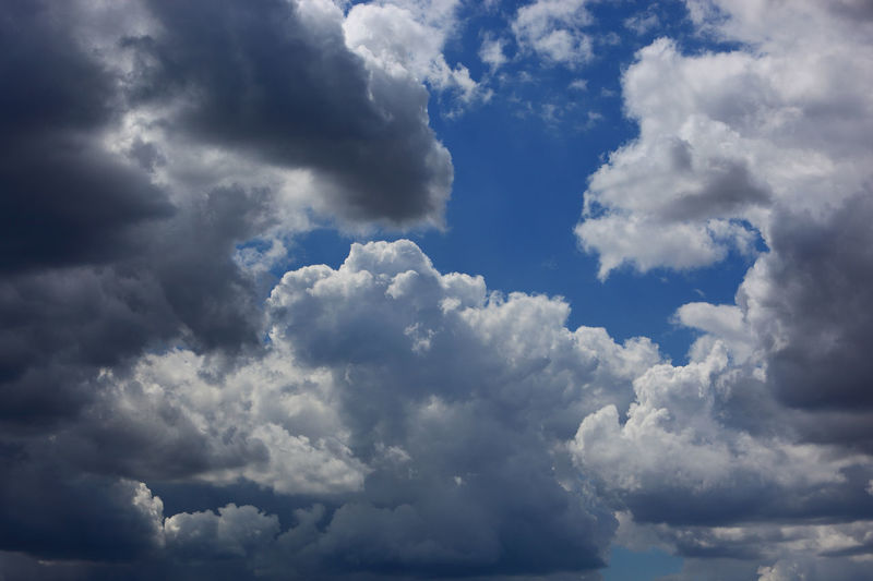 clouds in the sky, rain clouds, low pressure area Dark Clouds Backgrounds Beauty In Nature Blue Cloud - Sky Cloudscape Day Dramatic Sky Full Frame Low Angle View Low Pressure Area Meteorology Nature No People Ominous Outdoors Overcast Rain Clouds Scenics - Nature Sky Storm Tranquil Scene Tranquility White Color Wispy