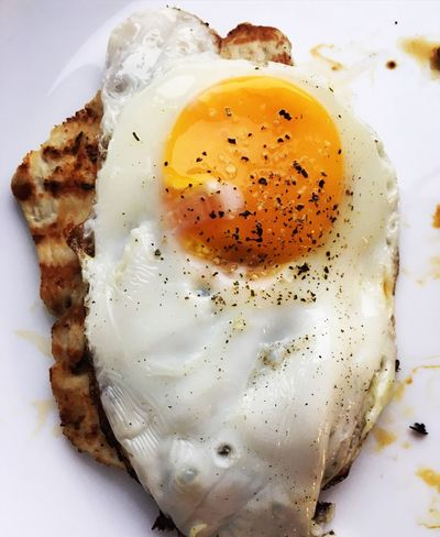 Egg Fried Egg Food And Drink Egg Yolk Food Freshness Egg White Ready-to-eat Sunny Side Up Healthy Eating Plate Breakfast Indoors  Close-up No People Omelet Day