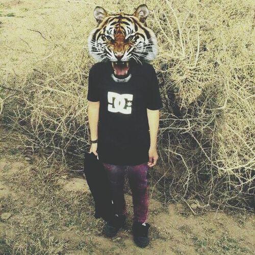 Indie Grunge Tiger Love