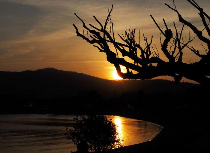 Seashore Sun_collection EyeEm Best Shots - Sunsets + Sunrise AMPt_Nature NEM Landscapes