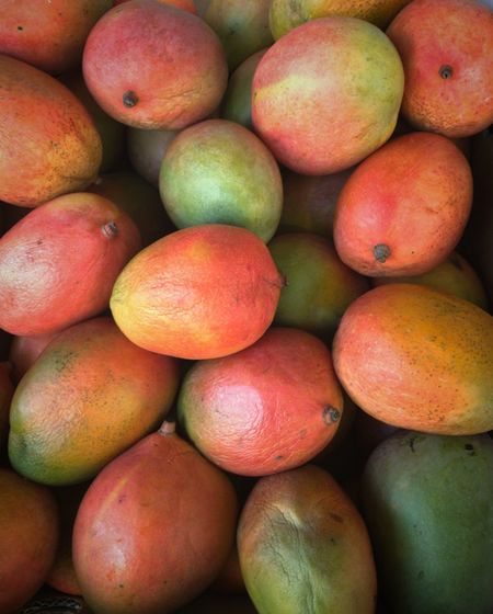 Mangoes at the