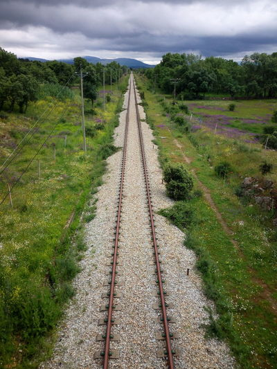 lanes Tree Sky Grass Cloud - Sky Green Color Parallel Countryside Grassland Rail Transportation Country House Diminishing Perspective Train Track Railroad Track vanishing point Treelined Railway Track Railway Station Platform Green Greenery Railroad Tie Growing