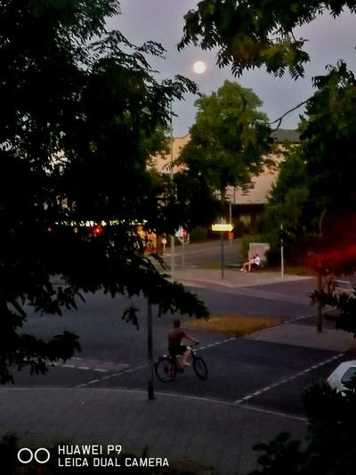 ... full moon ... Moon City Scape Stadtlandschaften Schmargendorfer Ansichten Schmargendorf Berlin Full Moon Night No Flash No Tripod Handheld Smartphone P9 Huaweiphotography Jo(c)me HUAWEI Photo Award: After Dark Tree City Sky