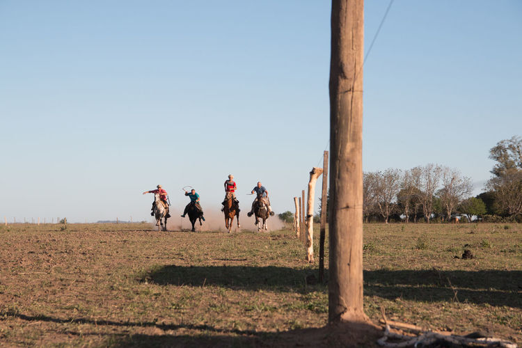 People on field riding horses against clear sky