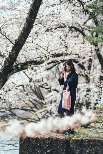 Sakura Real People One Person Plant Lifestyles Tree Young Adult Leisure Activity Standing Women Nature Day Adult Casual Clothing Young Women Technology Outdoors Side View Selective Focus Growth Sakura Sakura Blossom Sakura Trees