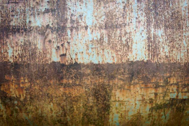 Art And Craft Backgrounds Day Full Frame Metal Nature No People Old Outdoors Paint Pattern Plant Rusty Textured  Textured Effect Tree Tree Trunk Trunk Weathered