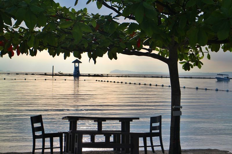 calm before the storm Samal Island Travel Destinations Philippines Davao Beach Shore Table By The Beach No People Tree Day Green Color Close-up Freshness Nature Leaf Beauty In Nature