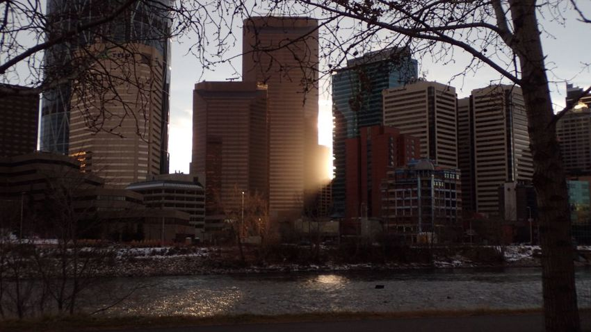 Light leak. On the banks of the Bow in Calgary, Alberta, not in Uuemoisa, wherever. Light Light And Shadow Sun Light Light Painting City Skyline Bow River End Of Shift Peek-a-boo The Purist ( No Edit, No Filter )