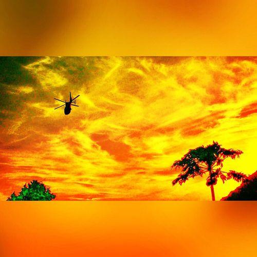 Angra Dos Reis RJ BRASIL ☀️🇧🇷 EyeEm EyeEm Best Shots EyeEm Team Photography Photooftheday Photographer Aviation Photo Taking Photos Sea And Sky Helicopter Flight Sunset Sun Golden Hour Skyporn Sky_collection Sky