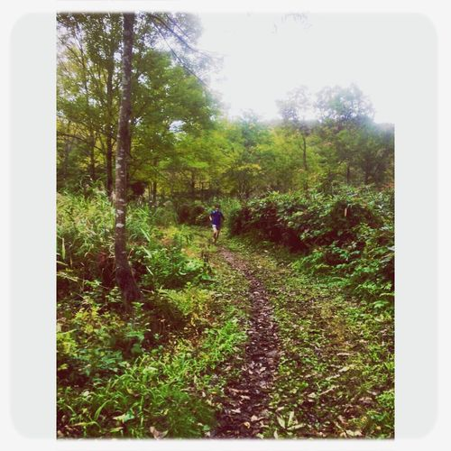 Trailrunning 斑尾 Fromthetrails Madarao Trail