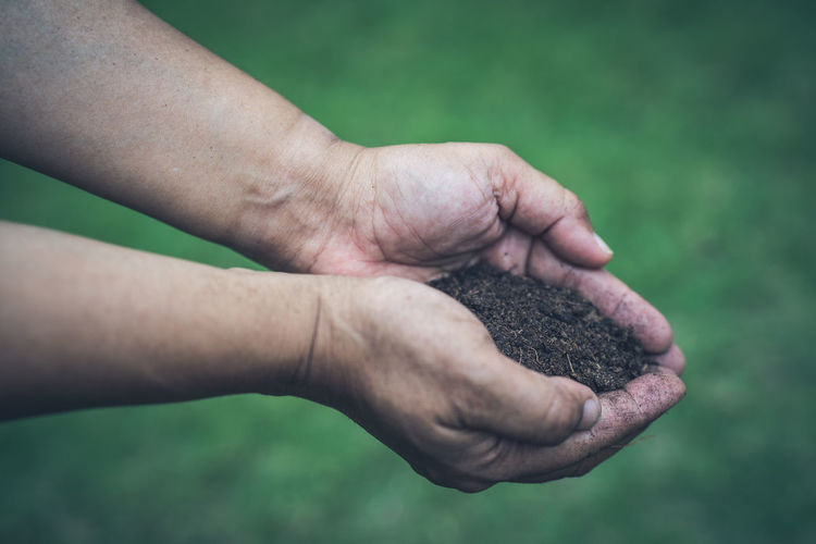 Close-up of man holding soil in hands
