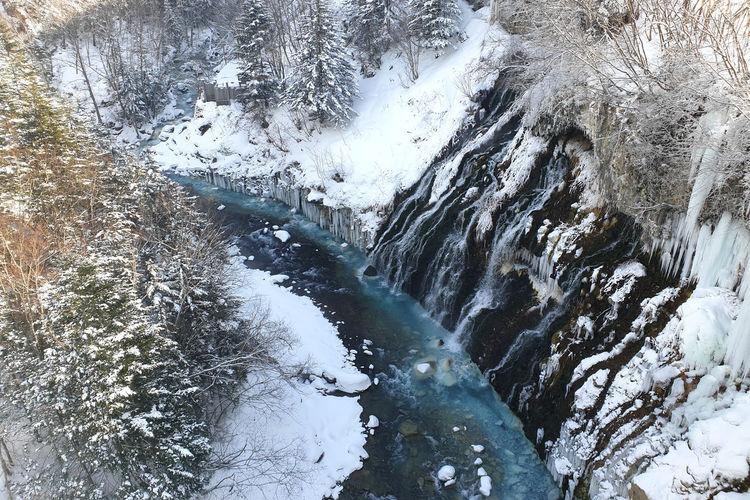 Frozen stream in forest during winter