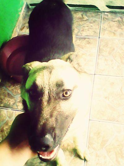 I love you Thor..... :) Thor Mais Lindo Do Que Nunca