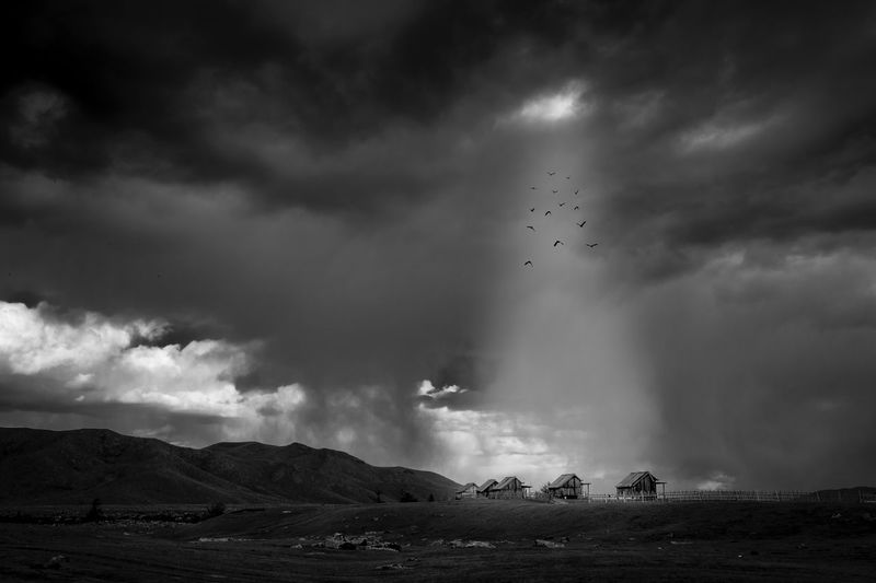 Mongolia Sky Cloud - Sky Flying Nature Bird No People Scenics Mountain Outdoors Landscape Storm Cloud Beauty In Nature Flock Of Birds EyeEm Best Edits Eye4photography  Hello World High Angle View Cloud Aerial View EyeEm Gallery Taking Photos Blackandwhite Monochrome