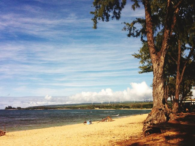 Oahu Hawaii Beach Not A Painting