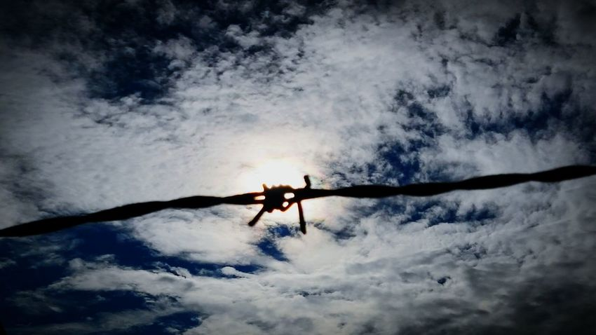 Sun Shining Through Barbed Wire Against The Sky Taking Photos No People EyeEm Gallery Simple Elegance Personal Perspective Rhode Island Photography⚓ EyeEm Masterclass EyeEm Best Shots Simplicity Sky And Clouds