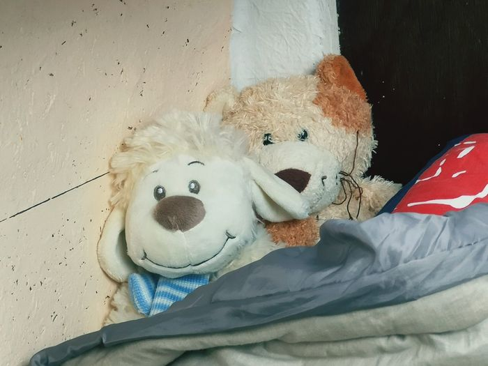 The two lovely ones! Funny No People Lovely Warm Hearted EyeEm Selects Stuffed Toy Teddy Bear Toy Close-up Toy Animal Animal Representation