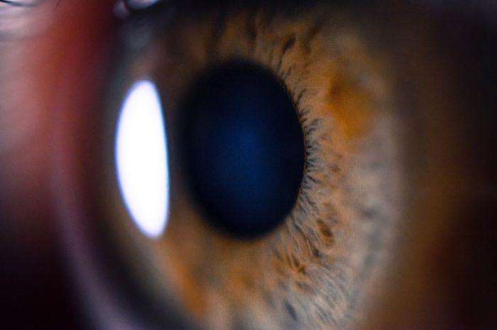 Close-up Macro Macro Photography Eye Humaneye