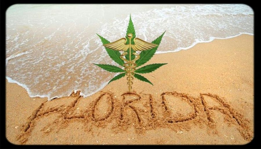 VOTE YES ON AMENDMENT 2. Vote Medical Marijuana LegalizeFL on November 4th , be heard!