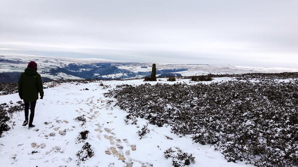 Pennines Yorkshire Mytholmroyd Snow Nature Nature Photography Naturelovers Hills Hilltop Wildlife Wildlife & Nature
