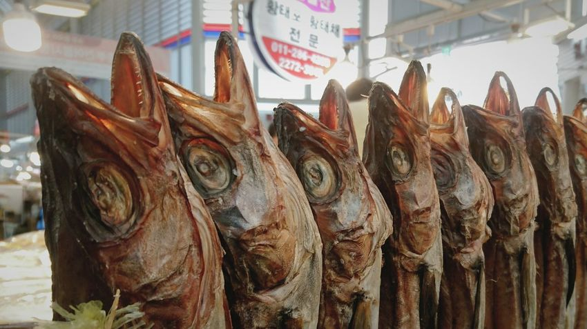 Seafood Fish Food Food And Drink Retail  Market Fish Market Price Tag For Sale Freshness Market Stall Business Finance And Industry Dried Food No People Travel Destinations Store Day Healthy Eating Business Outdoors Dry Fish Korea Seoul Marker