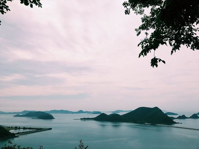 Sky Water Beauty In Nature Scenics - Nature Tree Cloud - Sky Sea