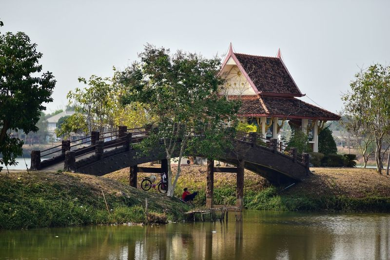 Thailand udonthani ban chiang Water Tree Plant Lake Waterfront Reflection Building Exterior Architecture Built Structure Growth Bridge - Man Made Structure Connection Bridge Nature No People Day Sky Tranquility Outdoors Thaiand_allshots Thailandtravel Thailand Photos Thailand🇹🇭