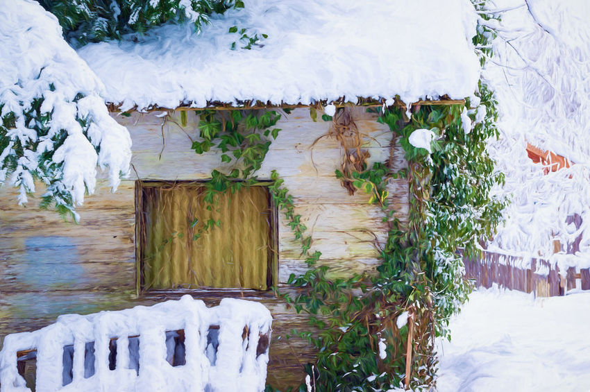 Beauty In Nature Cold Temperature Day Ice Ivy Leaves Lake Nature No People Outdoors Plant Shed Sky Snow Tranquility Tree Water White Color Window