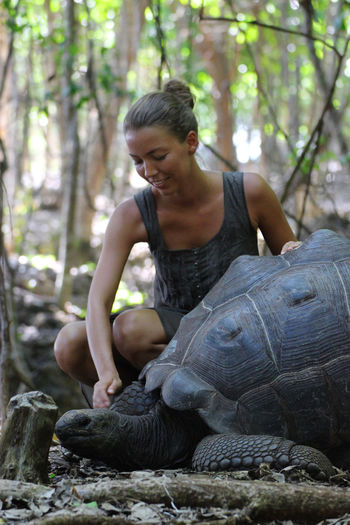 Woman looking at tortoise in forest