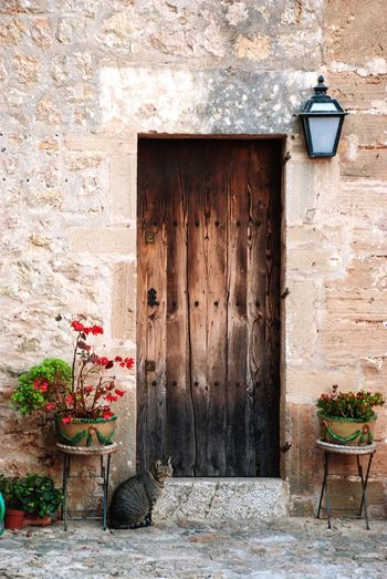 Mallorca architecture Spanish SPAIN Idyllic Picturesque Postcard Stone Pollença Mallorca Architecture Building Exterior Built Structure Wall - Building Feature Building No People Day Entrance Door Old Plant Closed Weathered Outdoors House Wall Potted Plant Window